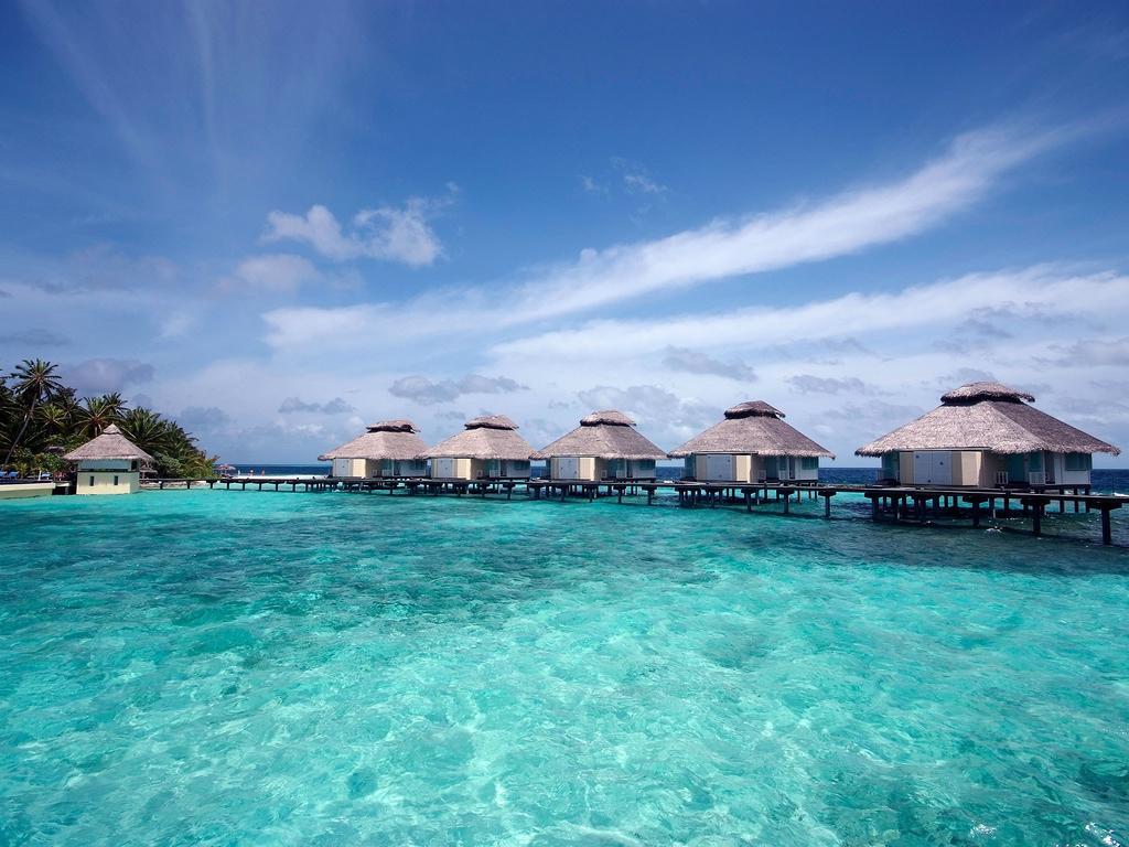 Ellaidhoo Maldives by Cinnamon (ex.Chaaya Reef Ellaidhoo), 4, фотографии