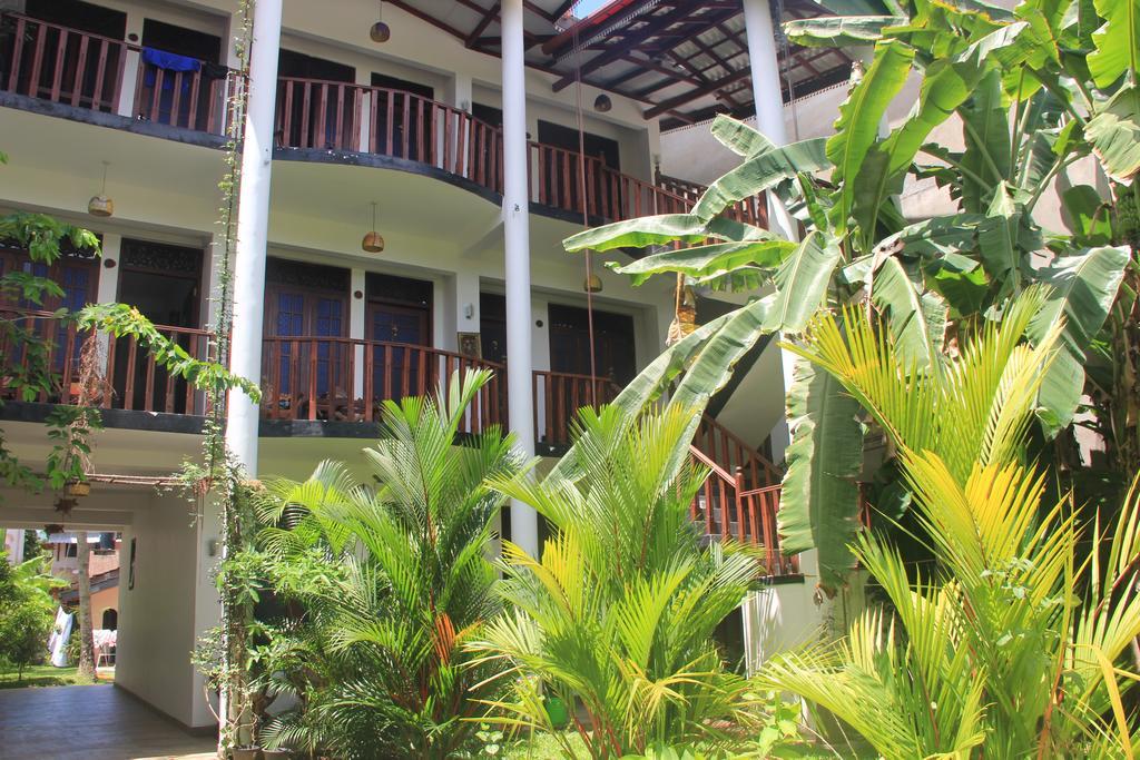 Tropicana Guesthouse Unawatuna, APP, фотографии